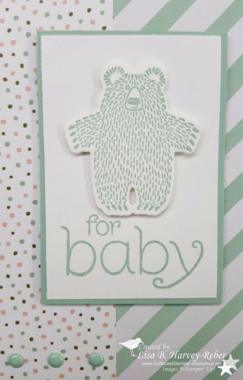 16 0126 Baby Bear 3