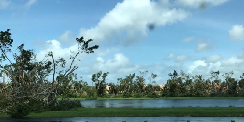 Irma 2 cropped