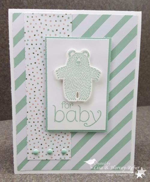 16 0126 Baby Bear 1