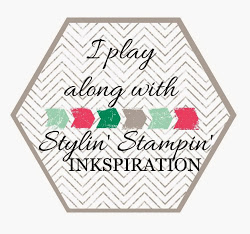 2015 SSINK Challenge Play Badge